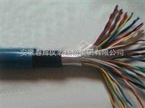 RVVZ通信设备电源线
