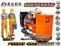 30KW沼气发电机组、低碳节能、30KW沼气发电机组、节能环保