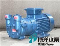2BV5161水环式真空泵 水泵价格