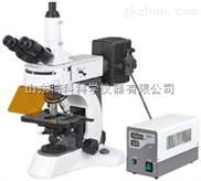 N-800F 实验室荧光显微镜
