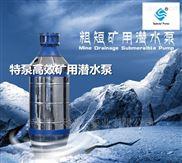 多级矿用潜水泵