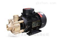 WF-10T小型鍋爐補水高溫熱水循環泵