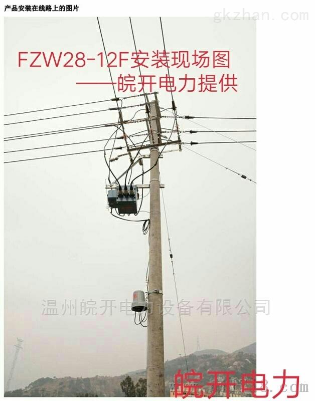 FZW28-12(套管/电缆型)看门狗真空负荷开关