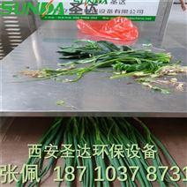甘肃大棚蔬菜微波干燥设备 SD-20HMV杀青机