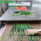蔬菜脱水机烘干机 圣达微波杀青干燥设备