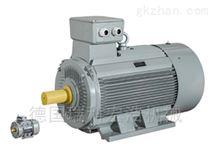 进口德国AC-MOTOREN电机
