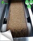 微波燕麦熟化设备隧道式连续24小时生产