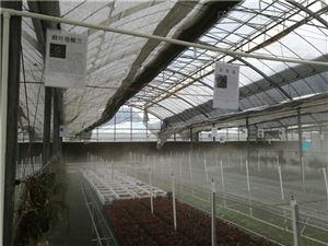 种植大棚加湿PC-JS400厂家