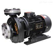 RGZ-10S单吸式高温热油循环泵