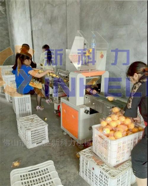 果蔬包装机-果蔬自动包装机