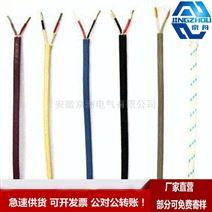 RE-2X(St)Y CAM PVC 补偿导线