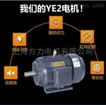 YVF变频调速电机