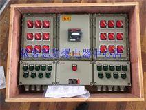 BTXM-6LK32XX防爆多回路照明配电箱