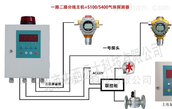 硫化氢检测报警仪双探头 型号:M408190