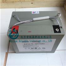 霍克免维护铅酸蓄电池AX12V60AH AGVhawker
