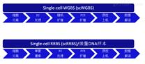 单细胞全基因组甲基化测序技术