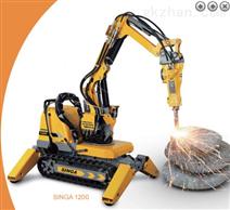 SINGA1200修復清淤機器人