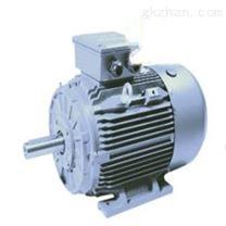 荷兰Omec Motors高压电动机