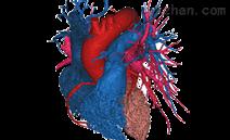 医学影像分割软件Mimics