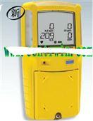 BNX3-000M-1泵吸式复合气体检测仪
