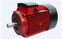 IE2电机(YE2系列高效电机)
