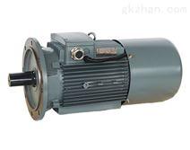XYT系列超超高效稀土永磁同步电动机