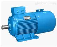 YZPE起重及冶金用变频调速电动机