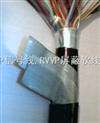 铠装耐火电力电缆 NH-VV22 NH-YJV22