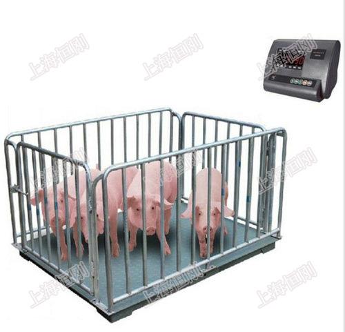 围栏牲畜秤