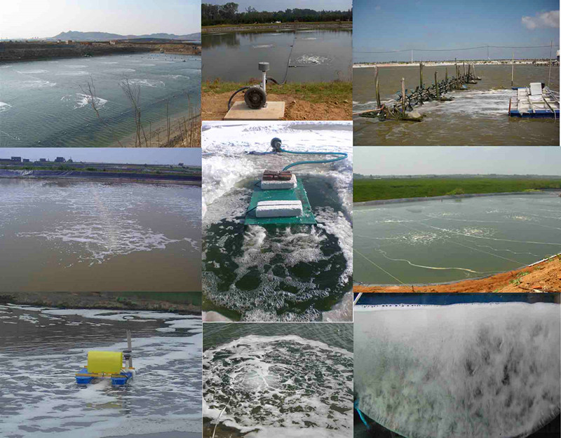 水产养殖应用案例